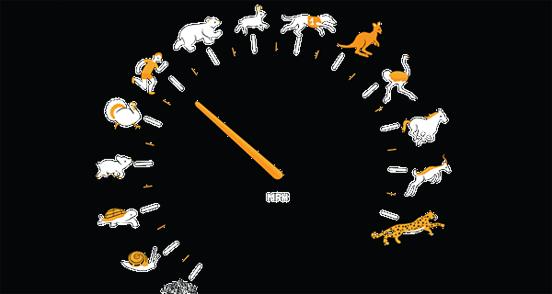 New Speed Meter