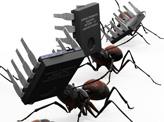 Tech Ant