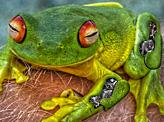 Green tiny monster