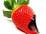 Maneating Strawberry