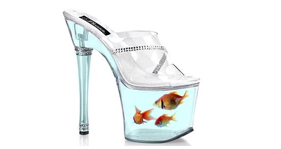 Goldfish Shoe