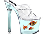 Goldfish Shoe