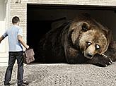 Peugeot Hibernating Bear