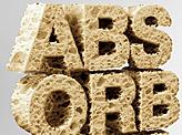 Sponge Asorbent