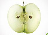Children Of Chernobyl Apple