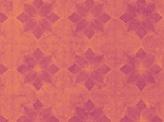 Warm Pink Grunge