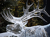 Deer Ice Carving