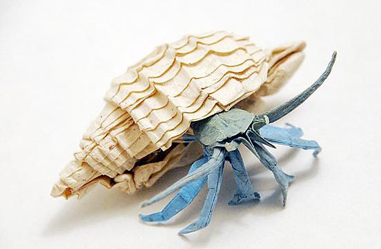 Hermit crab origami