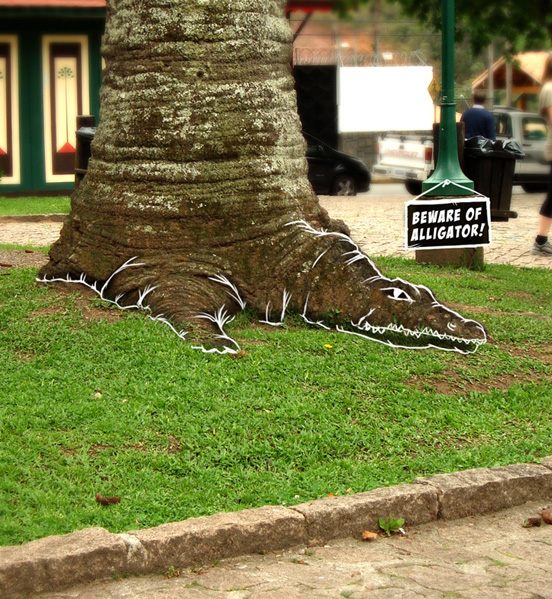 Beware of Alligator Real World