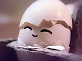 Newborn Egg