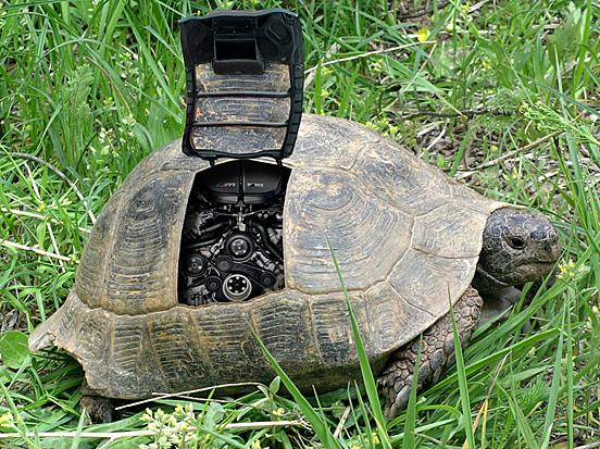 E-Turtle