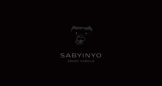 Sabyinyo