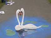 Quot Swan Quot