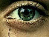 Human Rights Film Tear