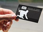 Seoninjas Business Card