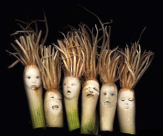 The Onion Babies