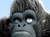 Gorilla's Day