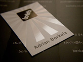 Spot Gloss Business Card