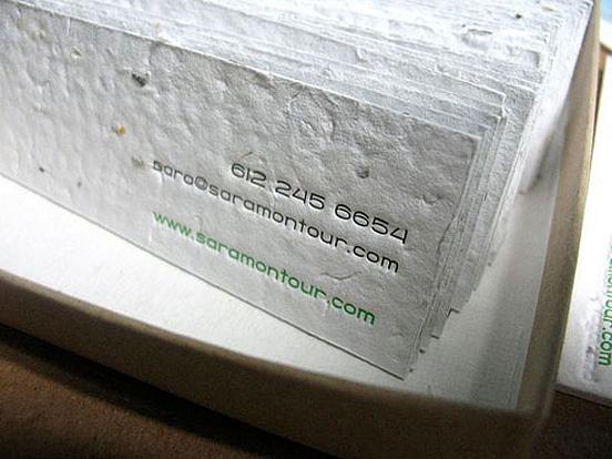 Sara Montour Business Card