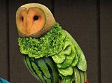 Fruit Owl