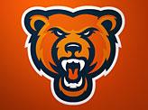 Bears Fans Online