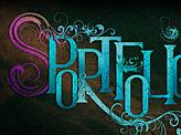 S Portfolio Typography