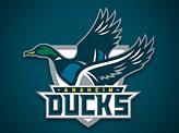Anaheim Ducks Concept