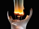 Bulb Arts