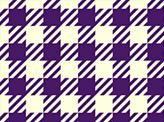 Checker Tartan Plaid