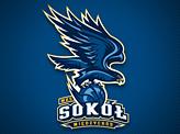 MKS Sokol Basket Ball
