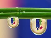 Water Drops & Colou