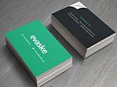 Evaske Business Cards