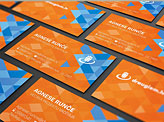Alvis Rozenbergs Business Card