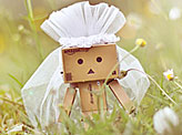 Danbo is Getting Married