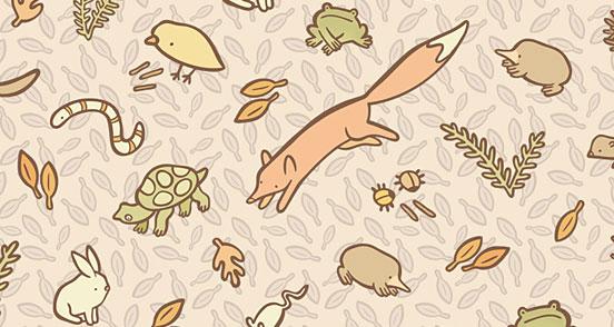 Leaf Litter