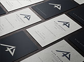 Alan Podemski Business Cards