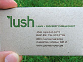 Functional Seed Packet Business Card