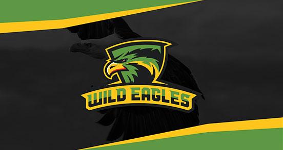 Wild Eagles