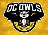 DC Owls