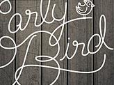 Early Bird Script Type