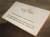 Fehr Fara Business Card