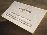 Fehr Fara Business Card