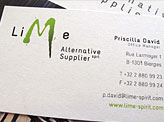 Snapshot Lime Business Cards