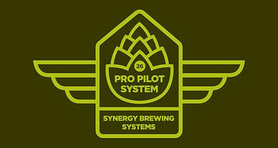 Pro Pilot System Revision