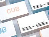 Lasercut Perspex Business Card
