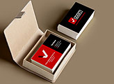 Viziom Business Cards
