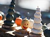 Pumpkin and Jack O'lantern Minis