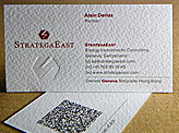 StrategaEast Business Cards