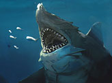 Premordial Shark