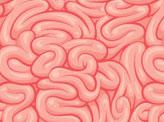 Brain Patterns